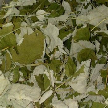 Лист малины, 50г